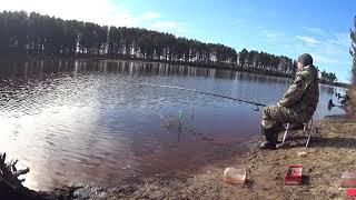 Рыбалка на поплавок Ловля сороги и красноперки весной на озере