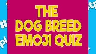 Take This Dog Breed Emoji Quiz | #thatpetlife