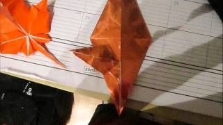 Origami Maple Leaf (photo Process)