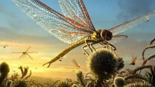 Интеллект насекомых (рассказывает энтомолог Владимир Карцев)