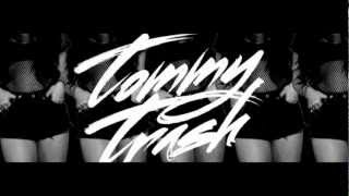 Deadmau5 ft Chris James - The Veldt (Tommy Trash Remix)