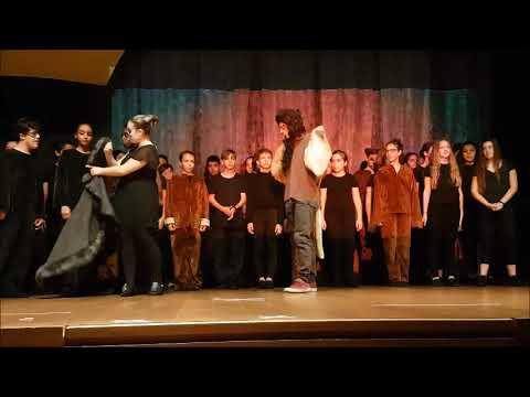 Merate, il musical del Re Leone
