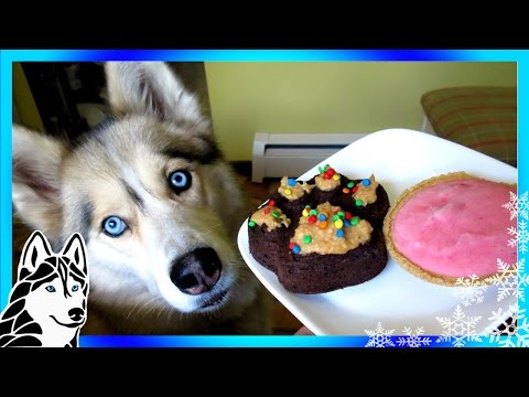 STRAWBERRY DOG ICE CREAM AND PUPCAKES DIY | Snacks with the Snow Dogs 35