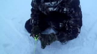 рыбалка на озере Неро