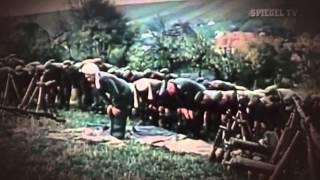 Von Krieg zu Krieg   Der Nahe Osten 2011   Spiegel TV