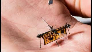 Tiny Robot Insects Powered by Lasers Have Arrived