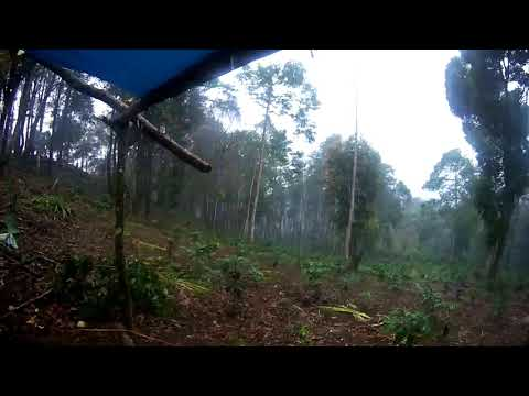 001-Hujan Mulai Turun Menjelang Pulang