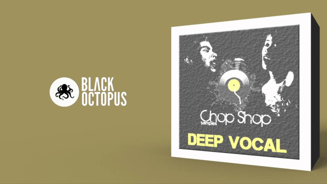 Deep vocal 300mb vocal samples for deep house tech for Classic house vocal samples