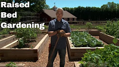 Learn the Benefits of Gardening in Raised Beds