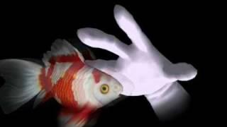 God Fish Story