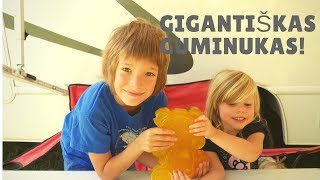 Eksperimentas: DIY GIANT GUMMY BEAR!