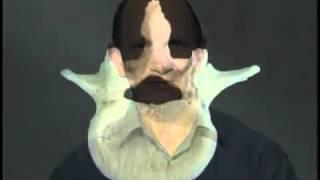 Видеоатлас Акланда. Фильм 3, часть 1. Анатомия позвоночника