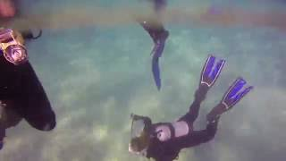 Bawley Point Dive 22/5/16