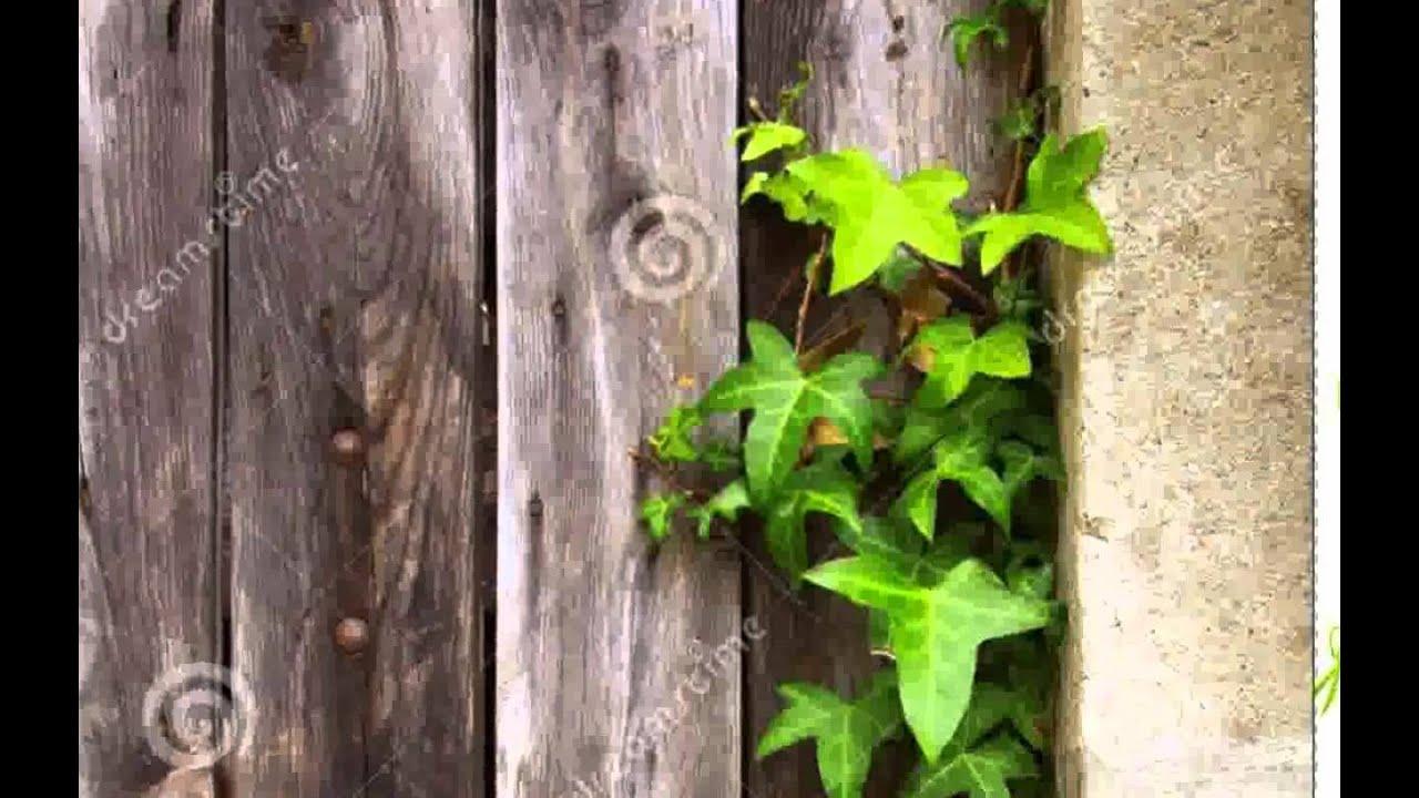 Alte Tür Dekorieren inspiration - zeilavara - YouTube