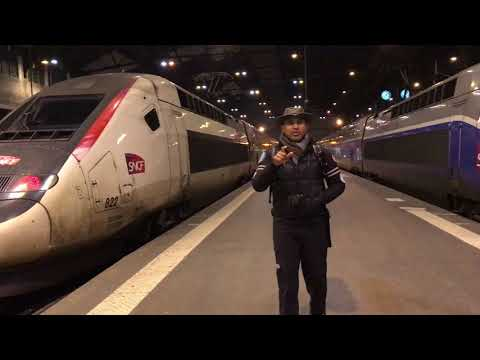 Gare De Lyon Paris TGV Station