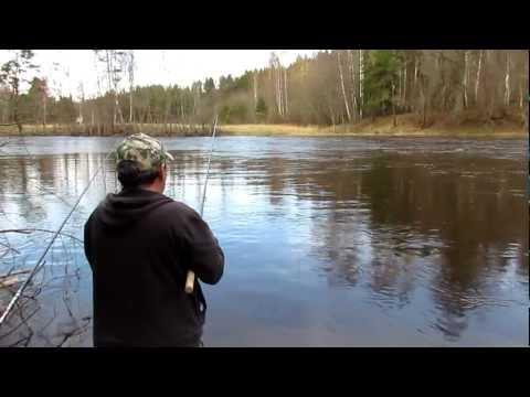 весенняя рыбалка на плотву в подмосковье