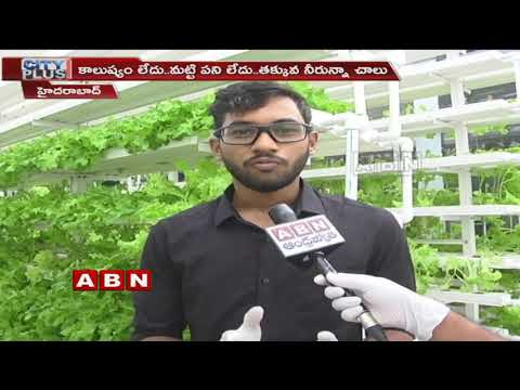 Special Story On Hydroponics Farming Technology | Hyderabad