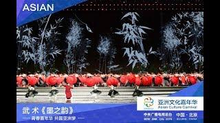 [亚洲文化嘉年华] 武术《墨之韵》 表演:成龙 河南少林塔沟武校 古琴演奏:张启航 | CCTV
