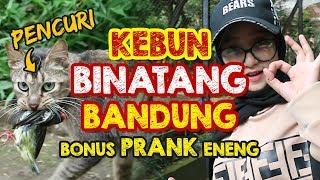 EXPLORE BANDUNG ZOO + BONUS PRANK ENENG #RIANSAGIT #AADANENENG