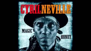 Cyrill Neville -  Blues is the Truth