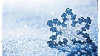 СНЕЖИНКА - ЧУДО ПРИРОДЫ(В этом видео собраны удивительные факты о снежинках . Снег не просто атмосферное явление , это миллионы..., 2016-12-22T17:46:08.000Z)