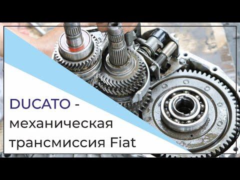 FIAT DUCATO Ремонт КПП, механическая трансмиссия Fiat Ducato