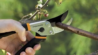 Review: Fiskars Traditional Bypass Pruning Shears (91095935J)