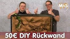 50€ Terrarium Rückwand bauen | DIY Anleitung | Reptil TV