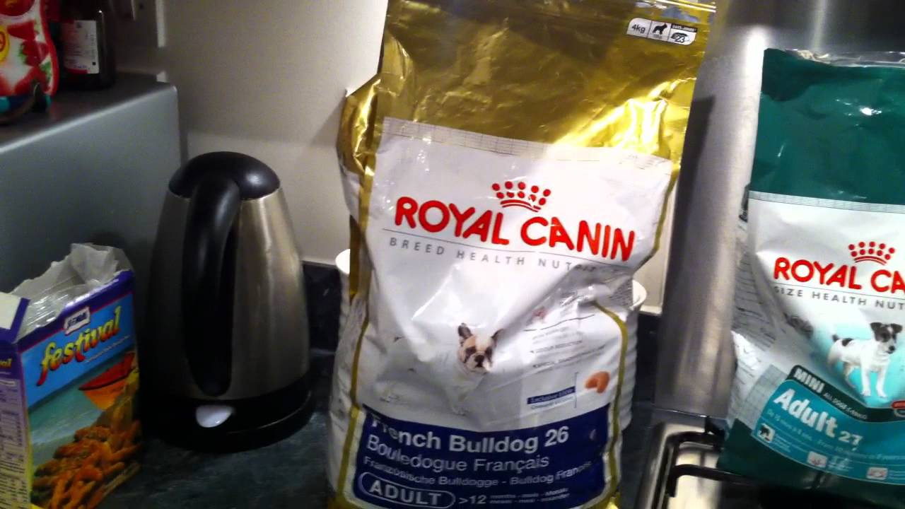Perfect Dog Food For French Bulldogs Youtube