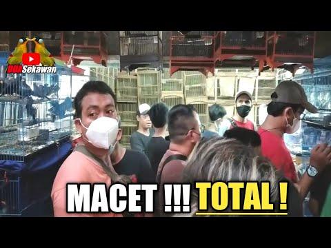 TERKINI !! SITUASI KIOS LANCAR JAYA EDIE JOVANIS PASAR BURUNG PRAMUKA - JAKARTA TIMUR