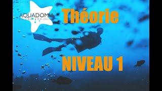 Cours plongée théorie niveau 1 GRATUIT, formation plongée N1 complète en ligne - Tuto plongée