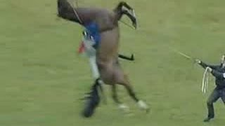 a race horse jumps and does a backflip unbelievable nearly lands on jockey