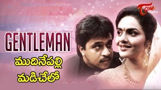 Gentleman Movie Songs | Mudinepalli Madi Chelo Video Song | Arjun, Madhubala