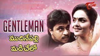 Gentleman Movie Songs | Mudinepalli Madi Chelo Video Song | Arjun, Madhubala