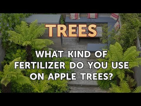 What Kind of Fertilizer Do You Use on Apple Trees?