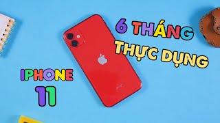 Nhìn lại iPhone 11 sau 6 tháng - nó quá THỰC DỤNG
