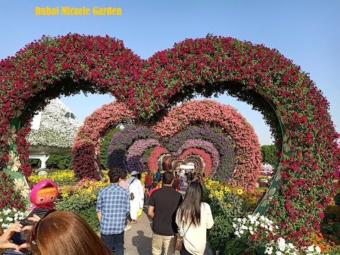 Dubai Miracle Garden 2020 I Best Place to visit in Dubai I Miracle Garden Dubai