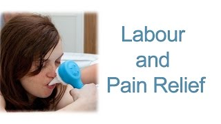 Labour and Pain Relief - Information about Labour and the options on Pain Relief