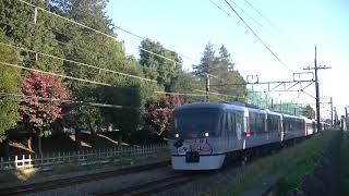 西武鉄道10112F カナヘイラッピング運転開始 特急本川越行 航空公園付近