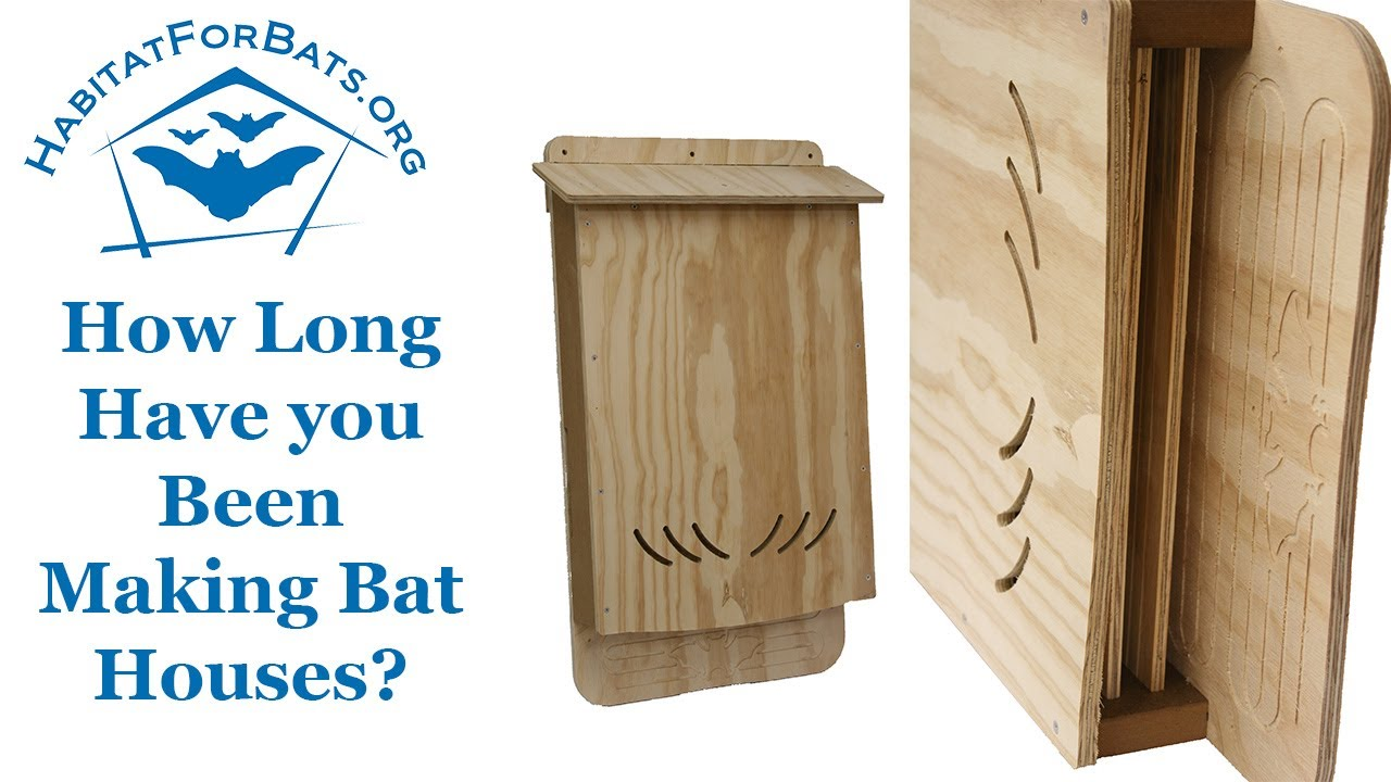 Faq How Long Have You Been Building Bat Houses