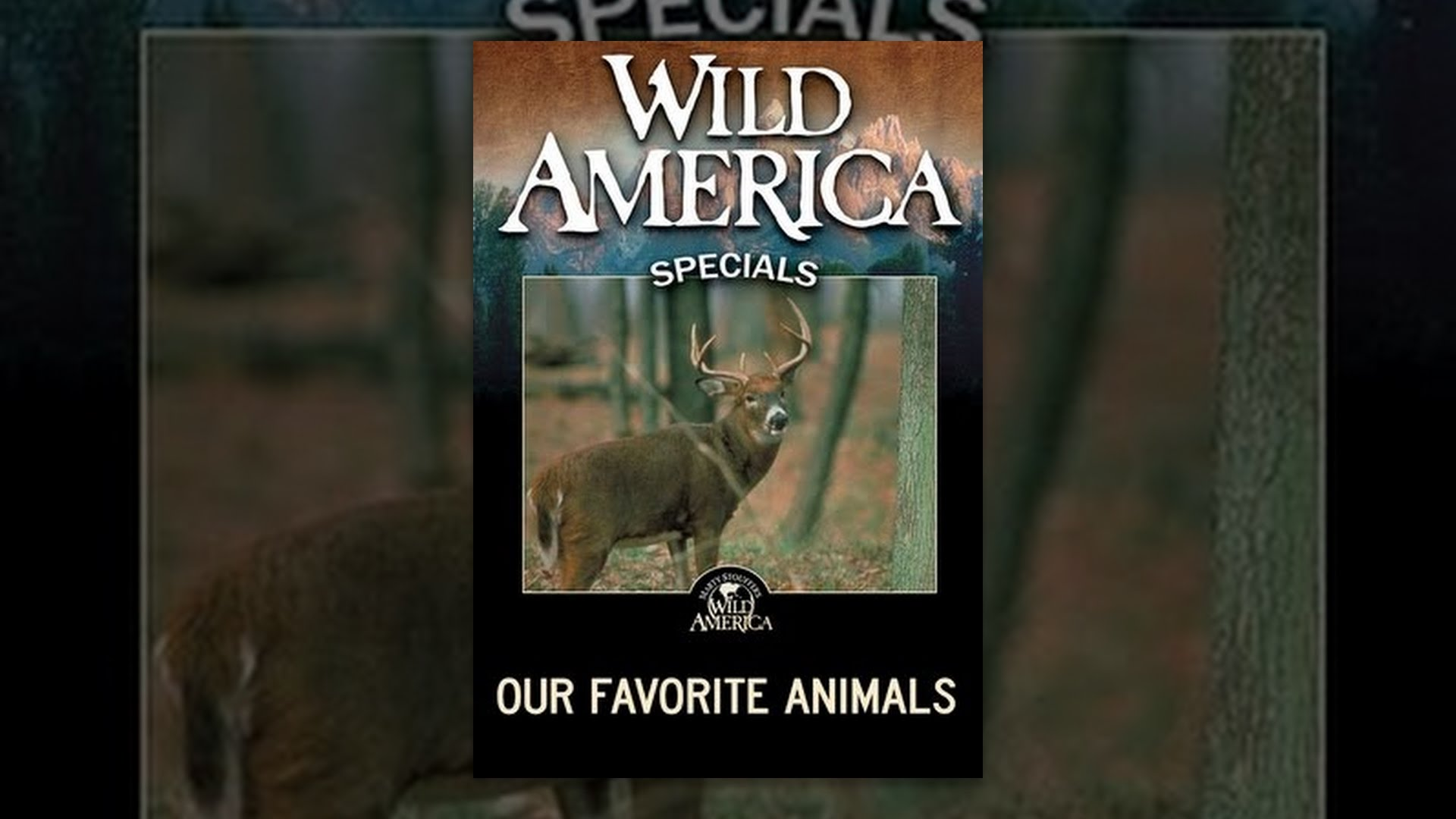 Wild America Specials: Our Favorite Animals