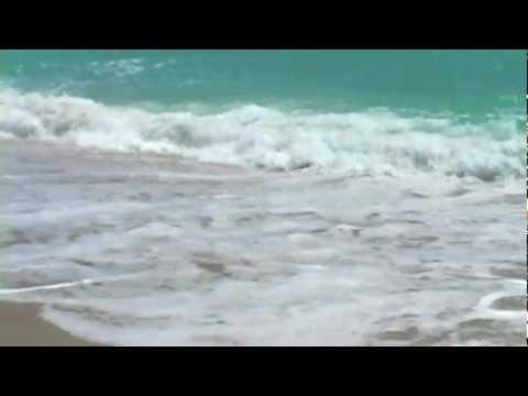 Relaxing Ocean Sounds w Seagulls