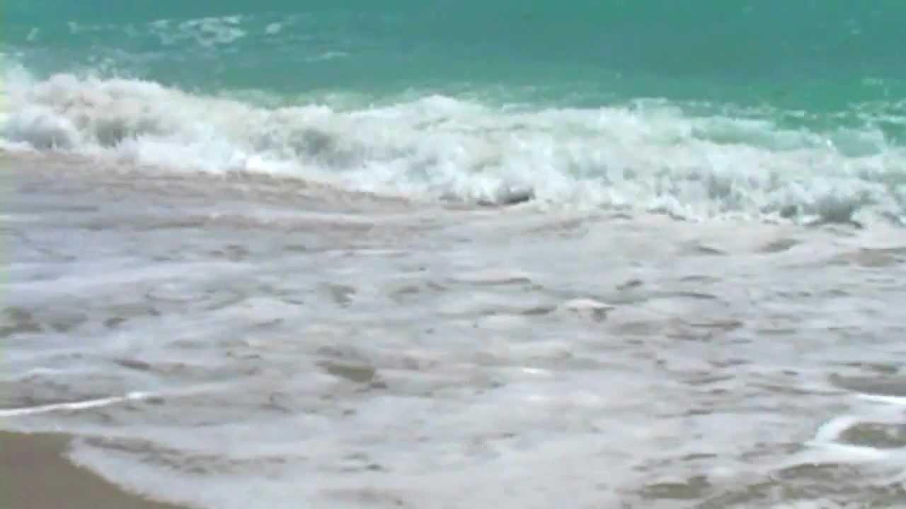 Ocean landscapes nature waves seagulls sea shorelines sea beaches ...