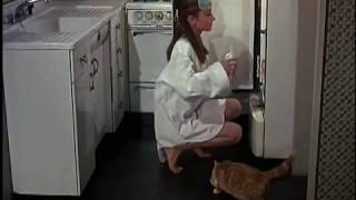 Documentary on Breakfast At Tiffany