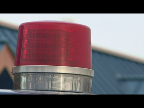 Local 4 viewer leads police to carjacking suspects