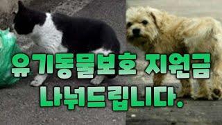 유기동물 보호 지원금 나눠드립니다. - 마감 종료