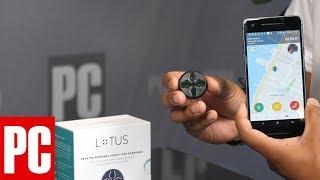 1 Cool Thing: Seam Technic Lotus