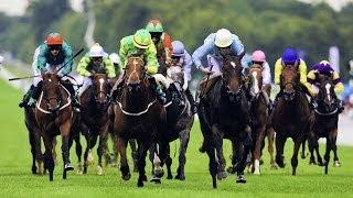 Horse Racing Festival Nuwara Eliya 2014