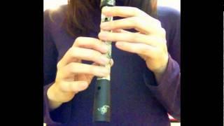 Me and My Broken Heart - Flauta dulce (Rixton) - recorder