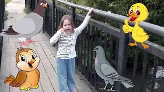 Алиса на прогулке кормит птиц и учит названия птиц на русском и английском. Игровой английский
